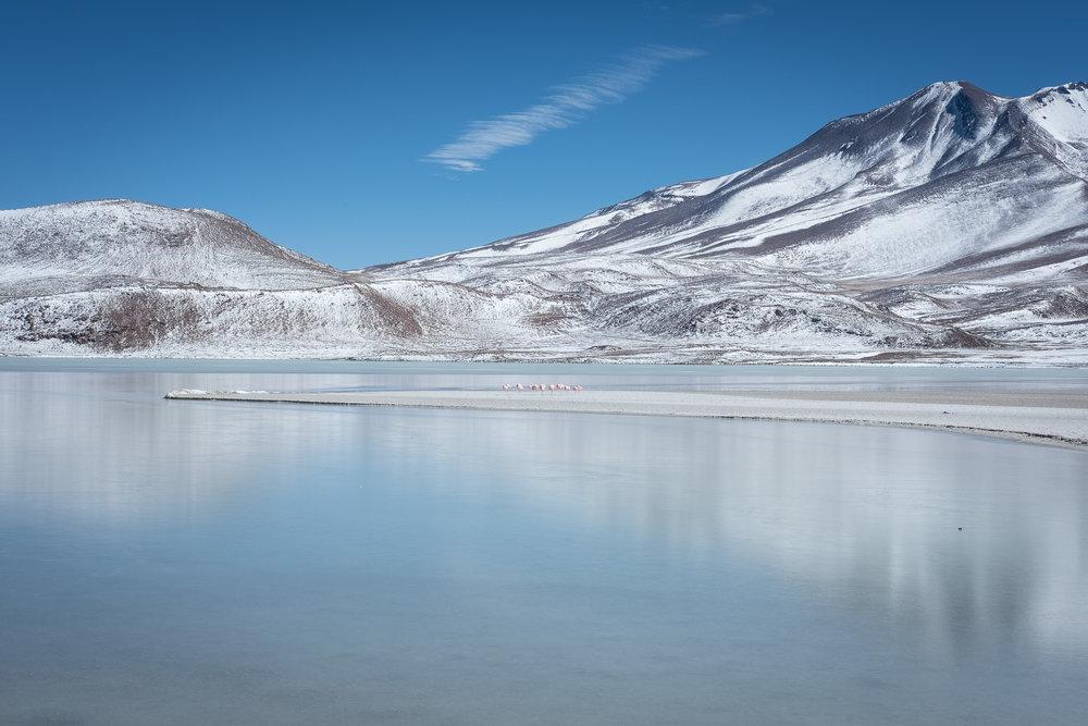 Laguna Hedionda  - Bolivie