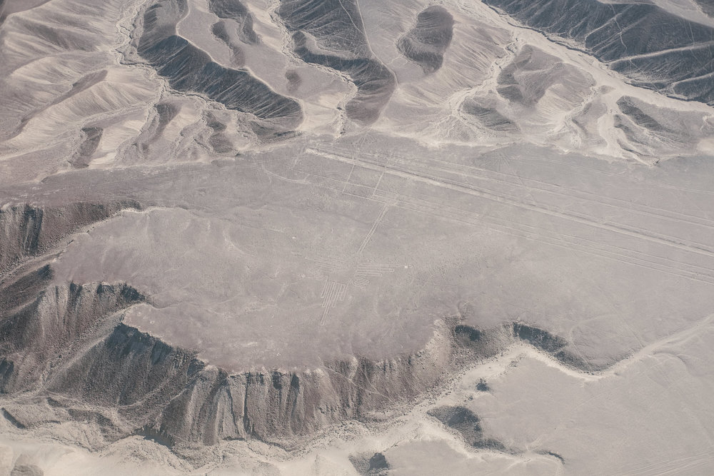 Les lignes de Nazca (Le colibri)  - Nazca, Pérou.