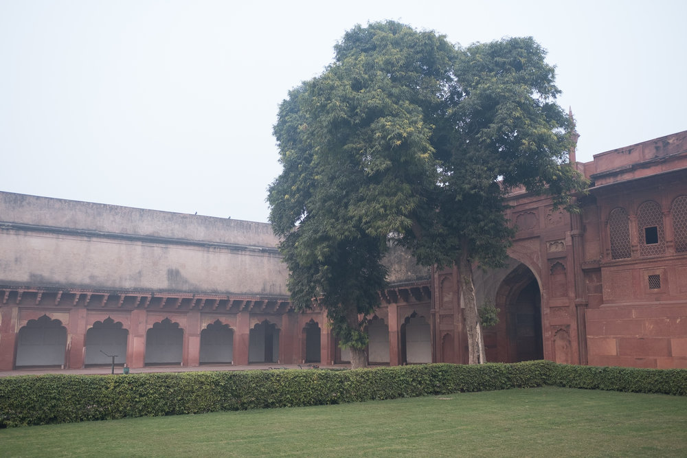 Fort d'Agra  - Agra, India.