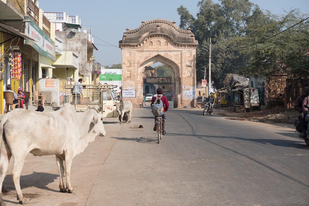 Gate  - Orchhâ, India.
