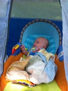 Benji playing in the cabana in the backyard