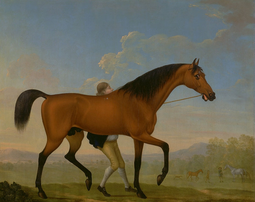 William Shaw, The Duke of Ancaster's Bay Stallion, Blank, Walking Towards a Mare