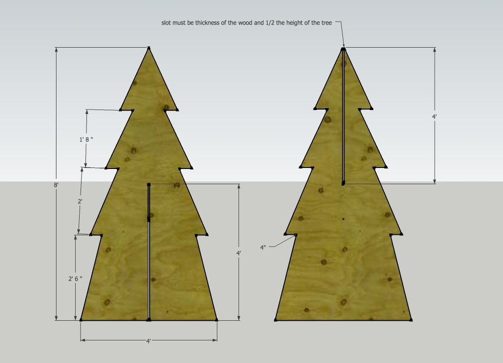 tree measurements.jpg