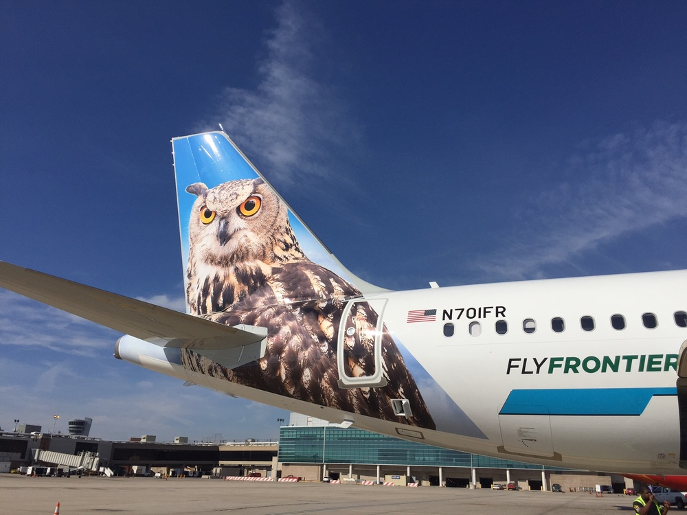Frontier Airlines' Mascot Contest — Allplane
