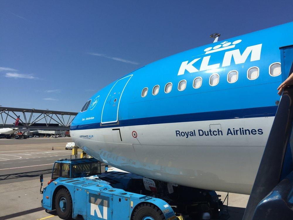 KLM Airbus A330.JPG