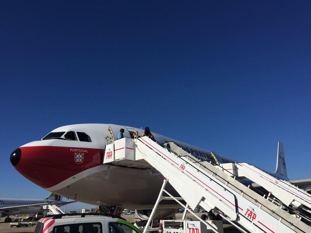 TAP Portugal A330 retro.JPG