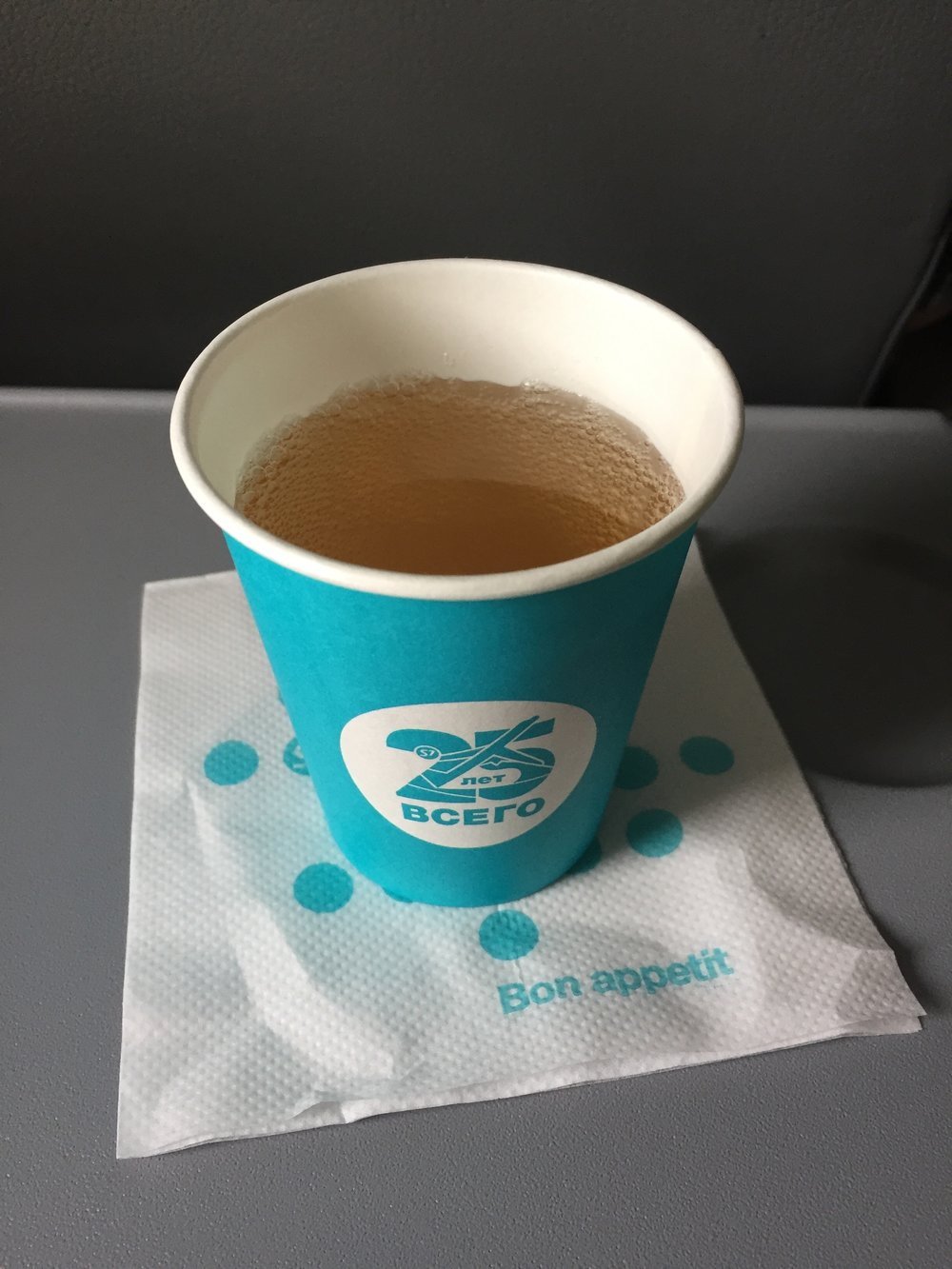 S7 airlines service.JPG