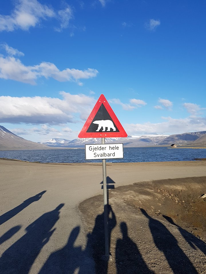 Beware the Polar bears!