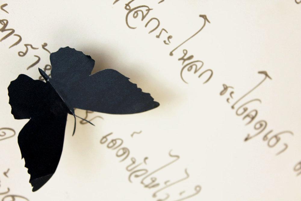 ButterfliesIMG_1183.jpg