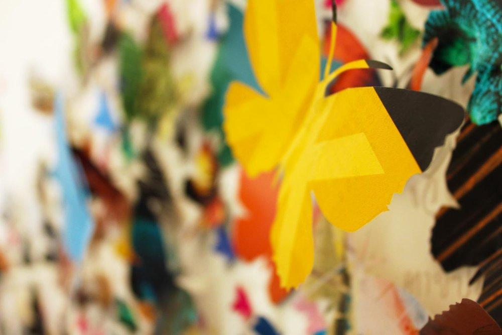 ButterfliesIMG_1181.jpg