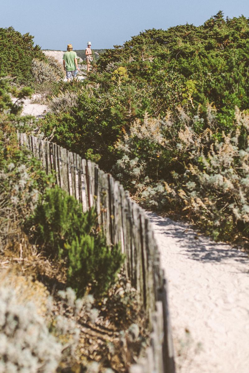 CorsicaRoadtrip0373a.jpg