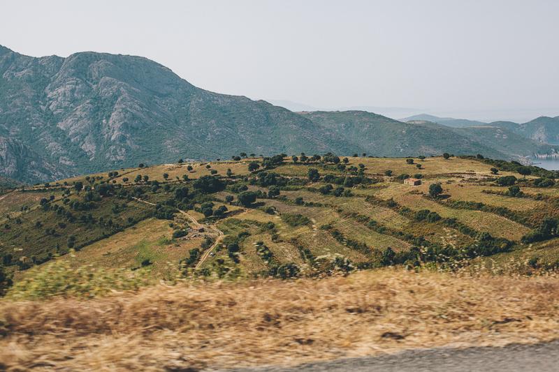 CorsicaRoadtrip0671.jpg