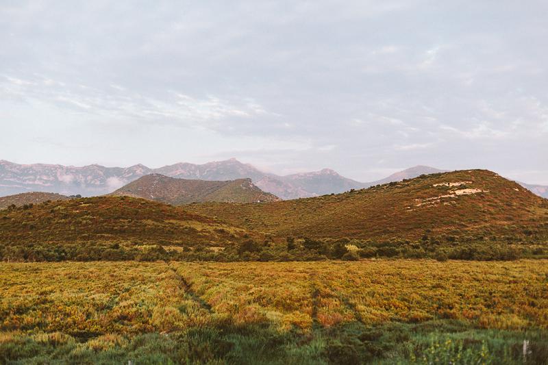 CorsicaRoadtrip1329.jpg