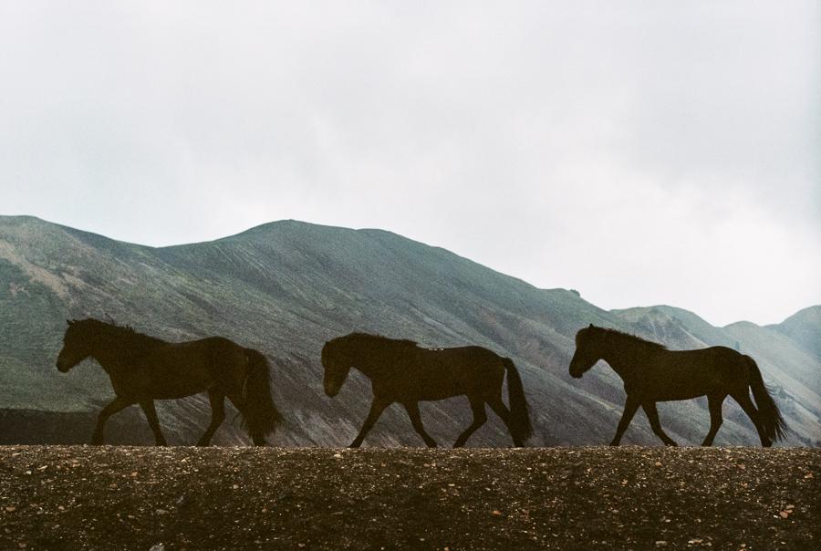 Iceland_2014-276.jpg