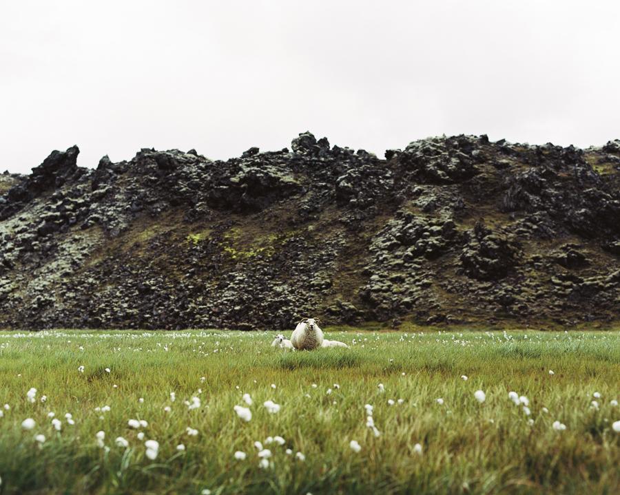 Iceland_2014-722.jpg