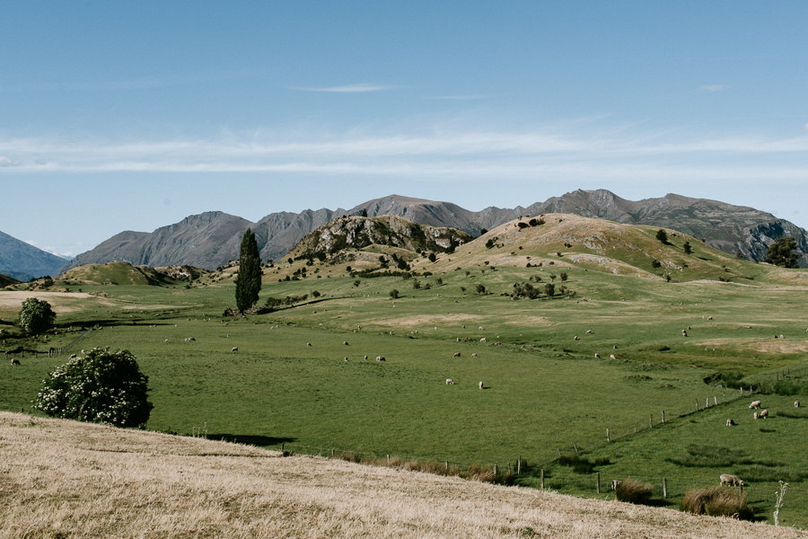 new-zealand-wanaka-wedding-photography-al136-IMG_2038.jpg
