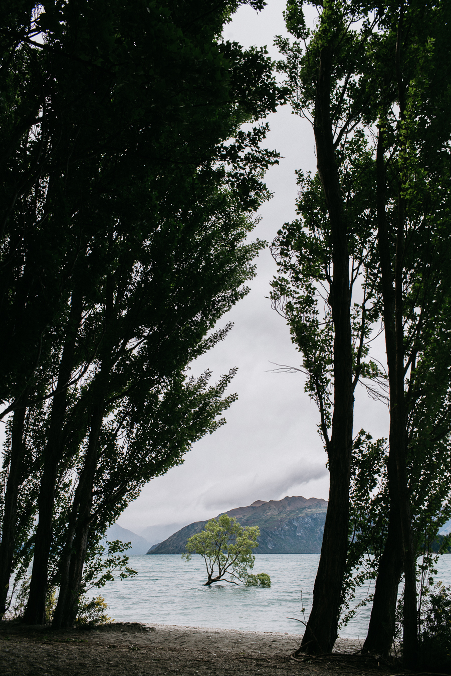 new-zealand-wanaka-wedding-photography-al001-IMG_1864.jpg