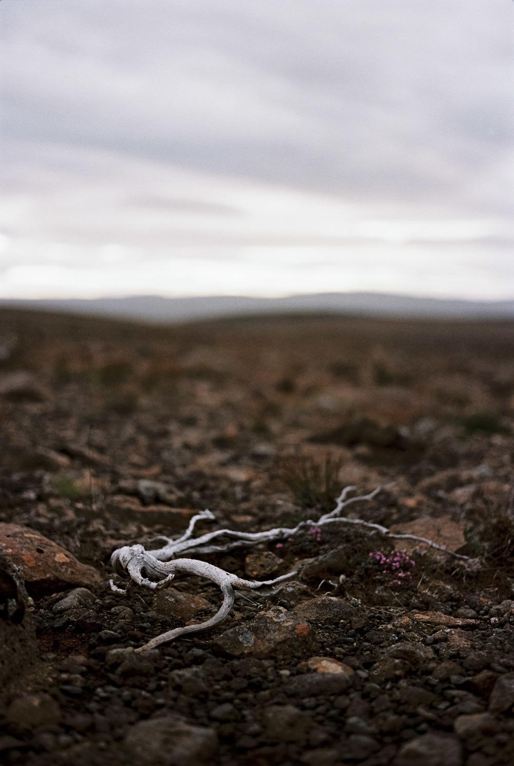 Iceland_2014-345.jpg