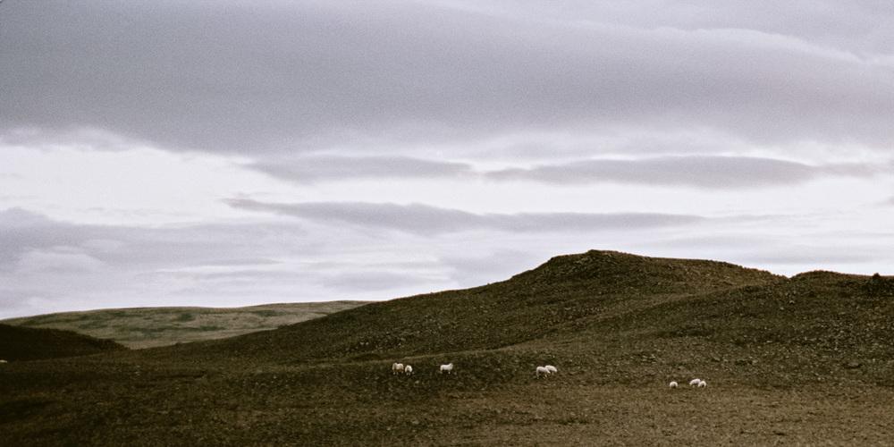 Iceland_2014-133-2.jpg