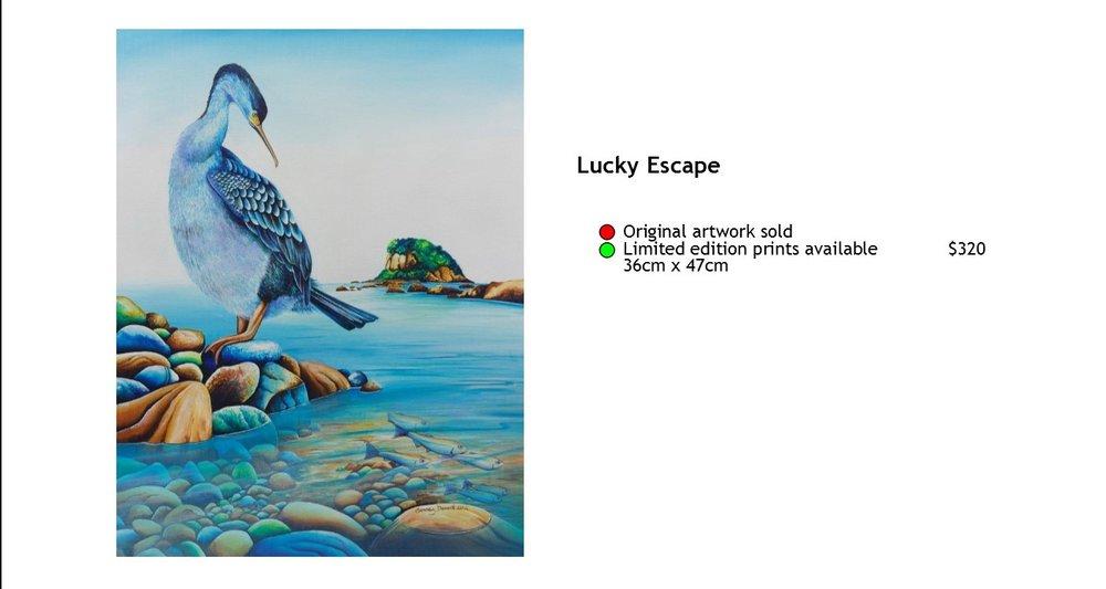 Lucky Escape.jpg