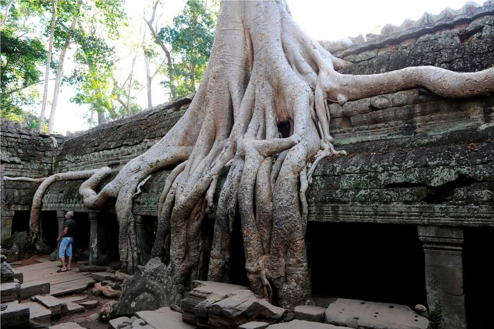 Angkor_Wat_11123241.jpg