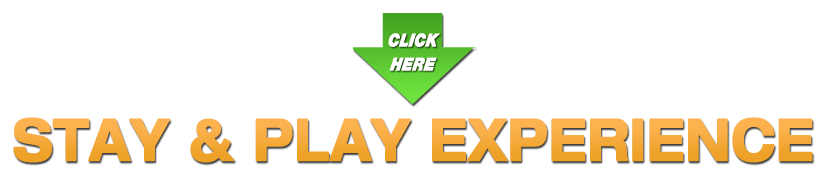Stay & Play Academy Experience