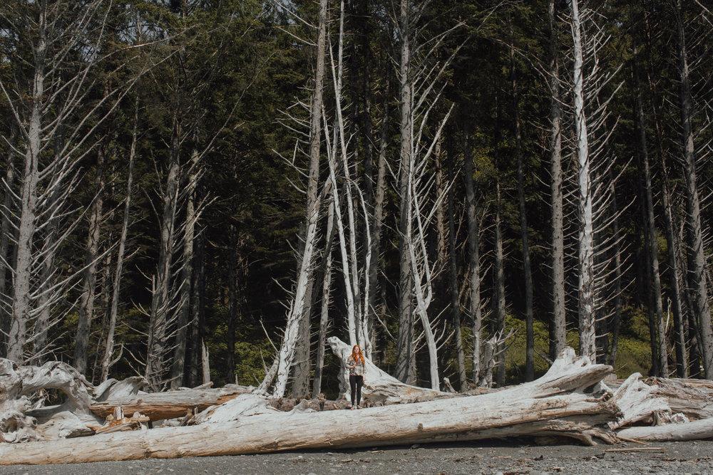adventure-photographer