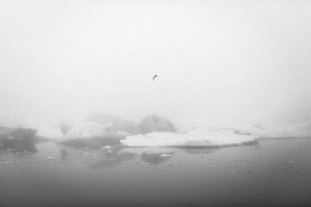 iceland2017-165.jpg