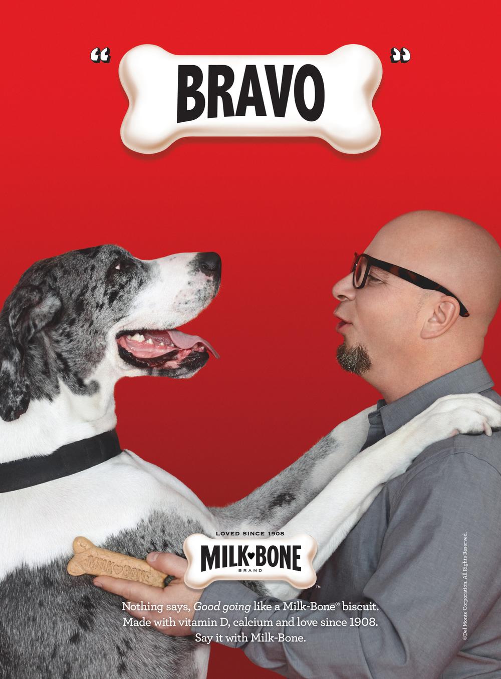 milk-bone print | 2013