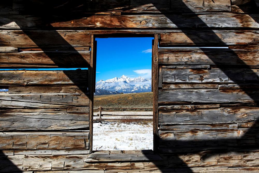 window-2WEB.jpg