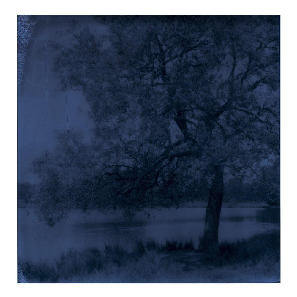 Blue#6sqWEB.jpg
