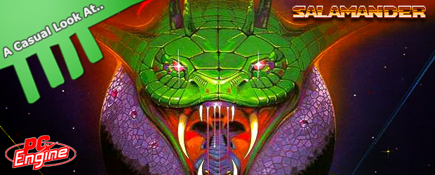 casual look at salamander