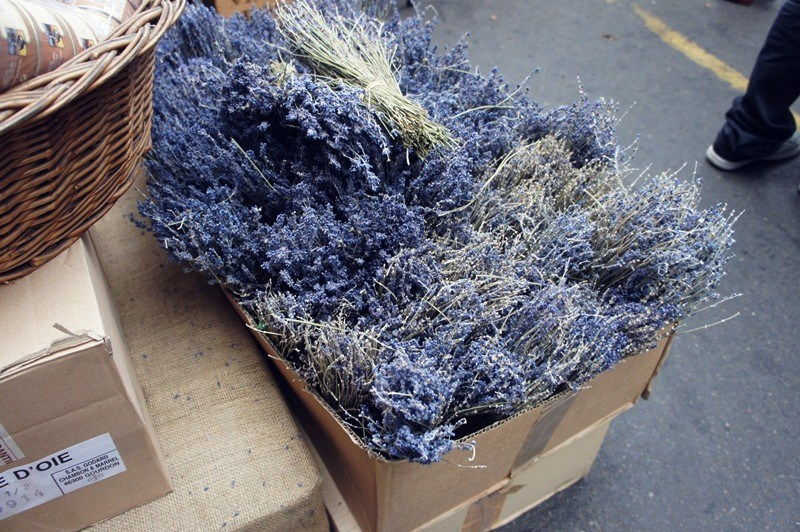 Dried lavender. London.