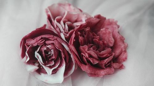 rosesss.jpg