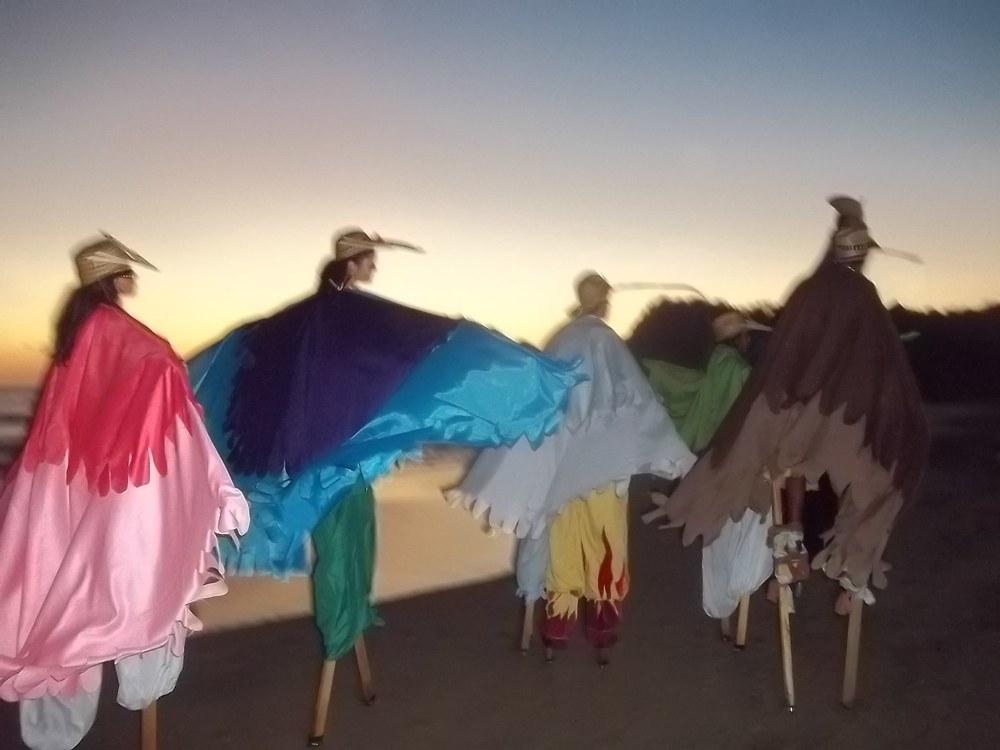 Roseated Spoonbill, MotMot,Garza/Crane,Parrot,HummingBird