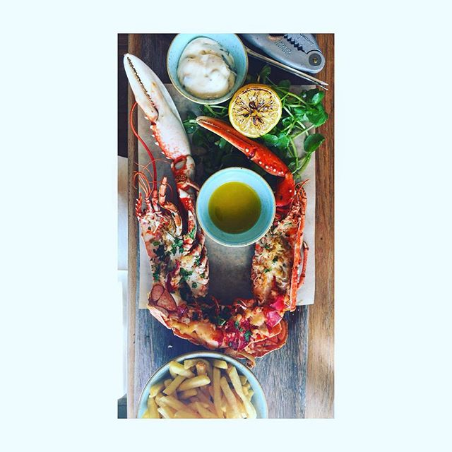 Rocking #lobster . . . . . . #food #instafood  #yummy #photooftheday #lunch #foodie  #foodblogger #foodblog #foodpic  #foodgram #instafood  #fresh #tasty #delish #delicious #eating #foodpic #hungry #foodgasm #foods #awesome #perfect #inspiration #foodie  #foodstyle #foodtime #foodheaven #foodday #foodphotography