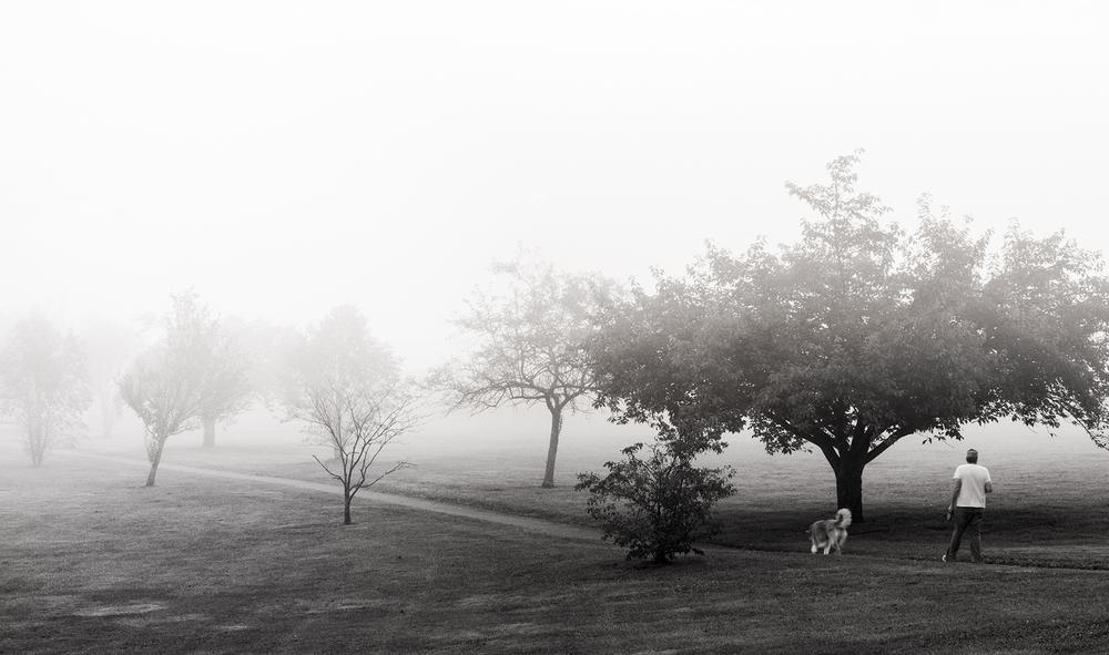 BW Dog Fog.jpg