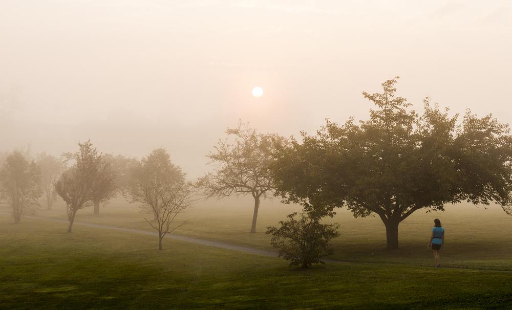 Runner Fog.jpg