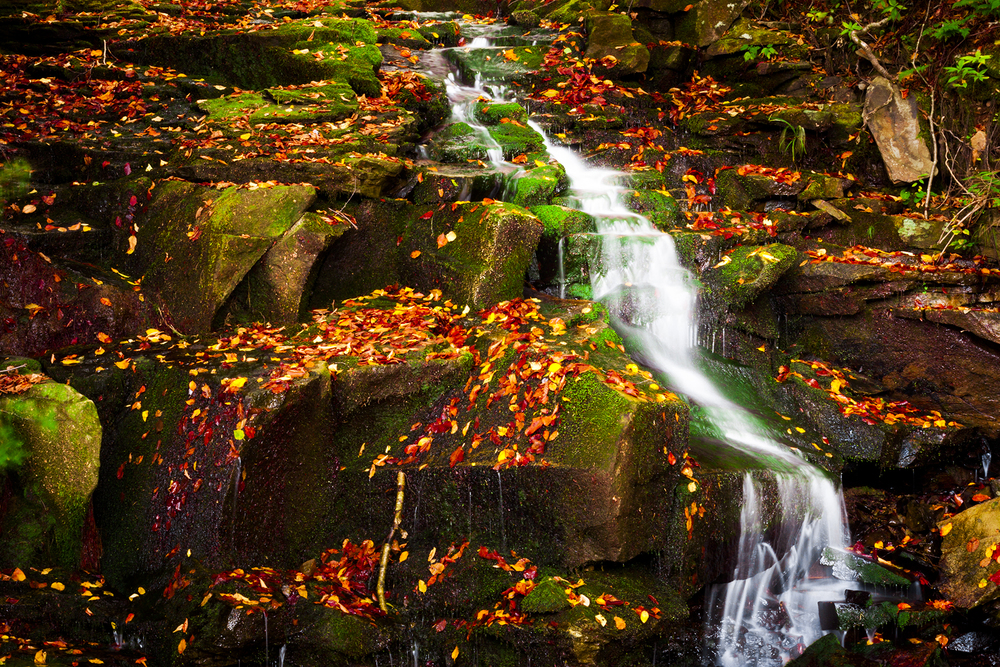 Colorful Waterfall.jpg