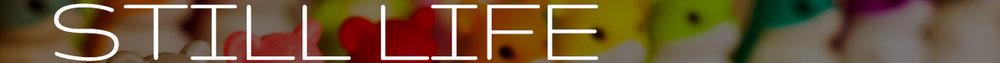 Still Life Gallery Banner Futura.jpg