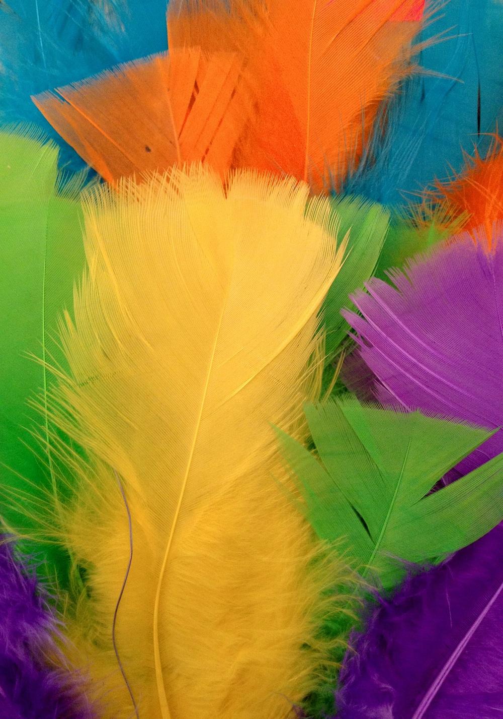 Påskfjädrar i härliga färger