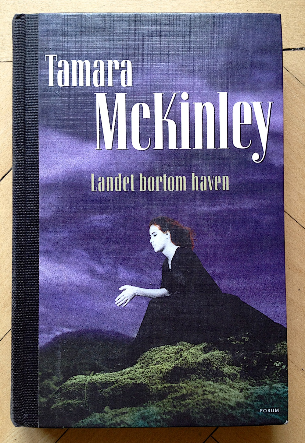Landet bortom haven av Tamara McKinley
