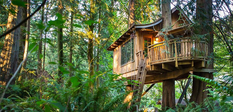 Photo Courtesy of  TreeHouse Point