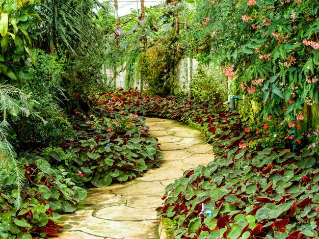 San Antonio Botanical Garden - Southern Living named the SA Botanical Garden as one of the The South's Best Botanical Gardens, March 2017.