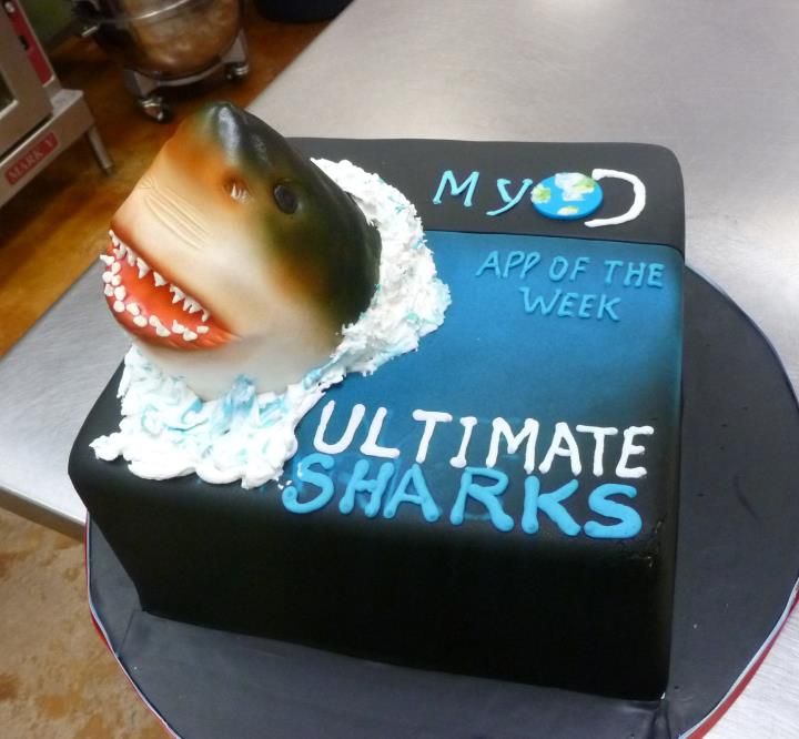 Cake for Shark Week at TLC