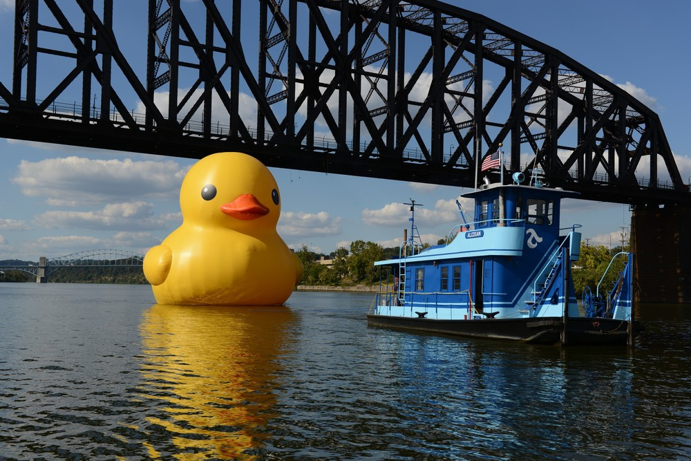 Duck on water towing.jpg
