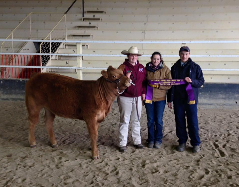 Bethany Bayliss Receiving the Longreach Most Potential Breeder Award 2015
