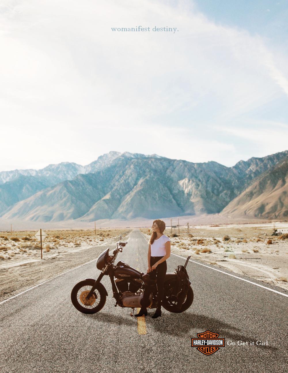 HarleyCompsPhoto.jpg