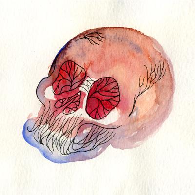 skulls5.jpg