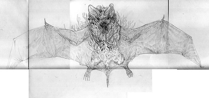 better bat scan